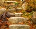 Upper Lawn Steps -8