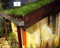 Green Roof on Straw Bale House