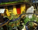 Straw Bale House and innovative rain catchment