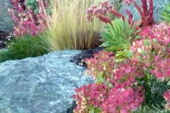 Samish Island  Garden