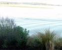 Alice Bay