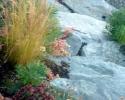 Stone Step Planting